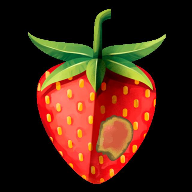 Erdbeere mit Mehltau