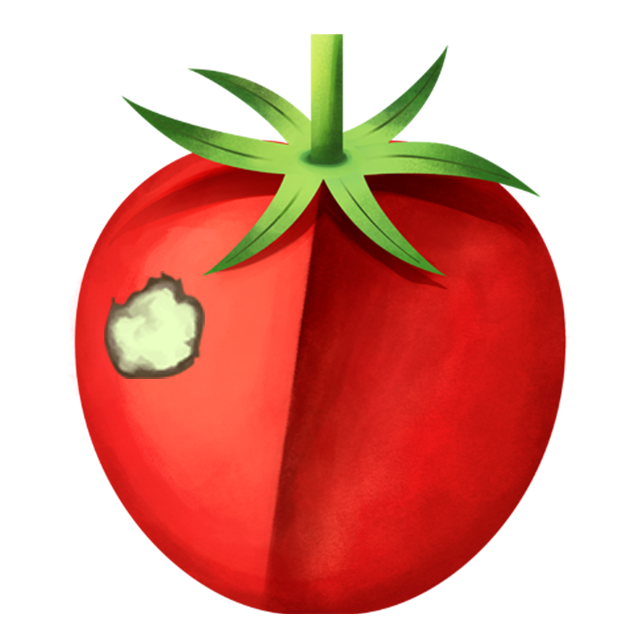 Flecken Tomate 4