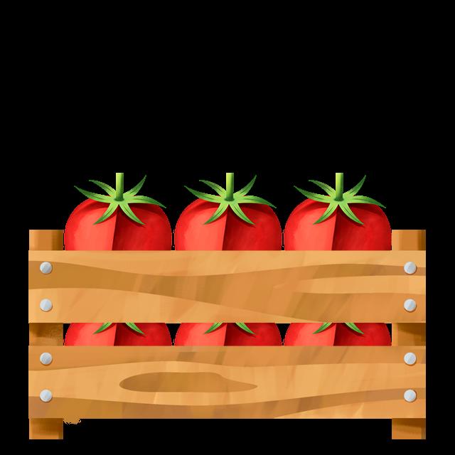 Kiste Tomate
