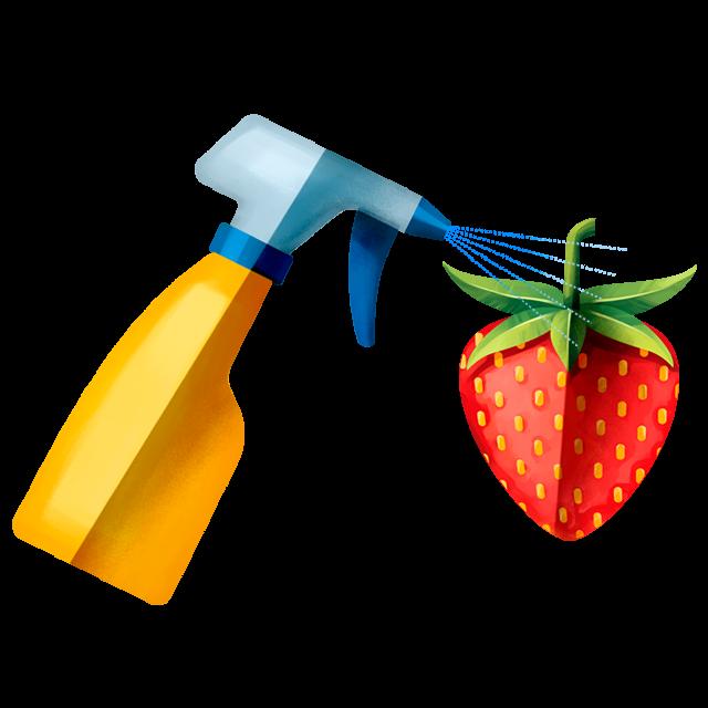 Sprühflasche Erdbeere
