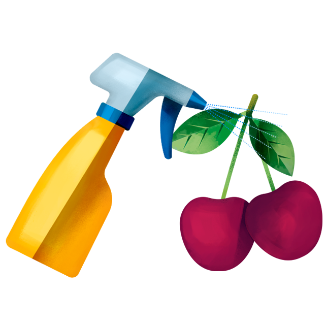 Sprühflasche Kirsche