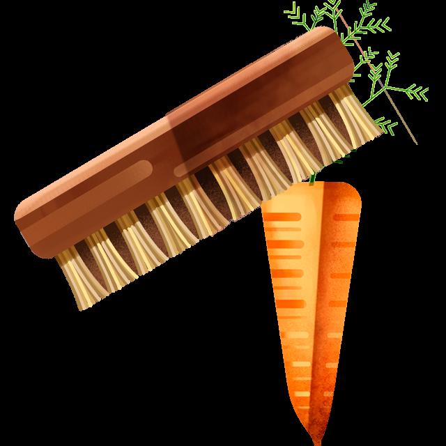Waschbürste Karotte